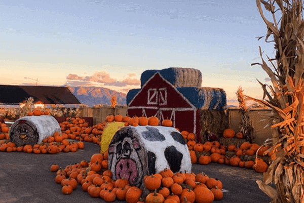 Best Fall Events Santa Fe, NM
